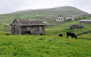 سوباتان در بیست کیلومتری غرب لیسار در همسایگی تالش در استان سرسبز گیلان قرارگرفته است.